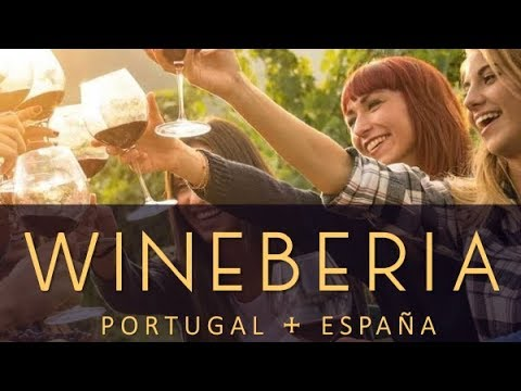 Discover Wineberia, the sunny side of wine