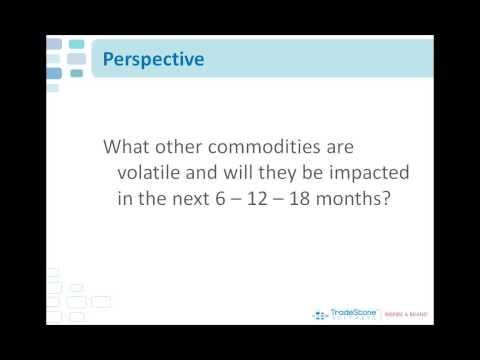 TradeStone Webinar 2011 - Predicting Cotton Prices: The Cotton Experts Sound Off