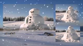 Зима (зимняя сказка, зима в саду, зимний сад)