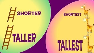 Taller and Shorter & Tallest and Shortest   Comparison for Kids   Learn Pre-School Concepts
