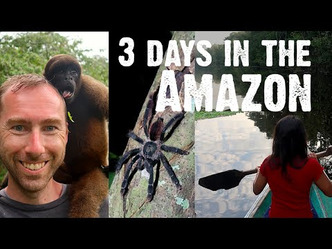 Amazon Rainforest Experience | Peru Vlogs
