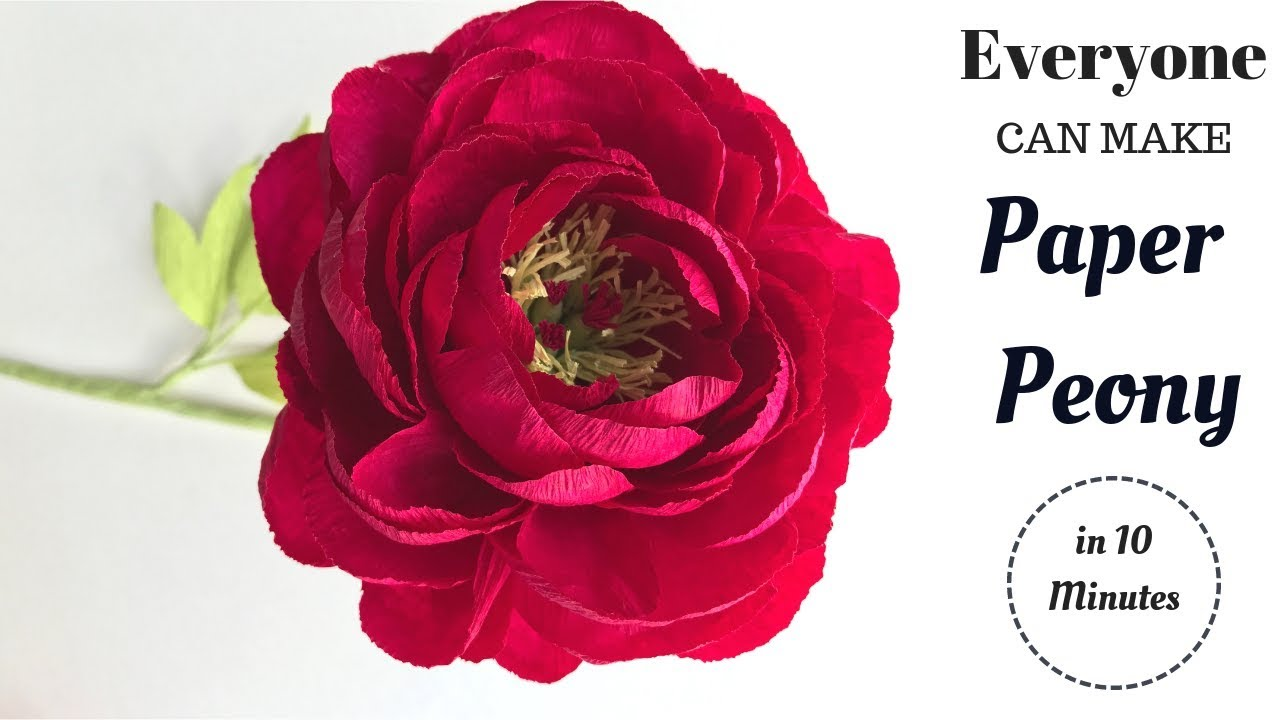 How to make paper flower easy step by step paper peony flower from how to make paper flower easy step by step paper peony flower from crepe paper mightylinksfo