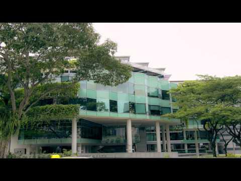 HSG Asia Term - University of St.Gallen's Flagship Exchange Program