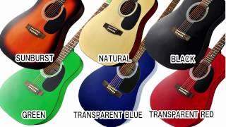 PLAYTECH アコースティックギター D-4