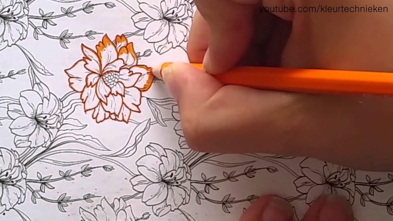 Bloemen Kleuren Kleuren Voor Volwassenen Youtube