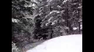 REEFER CONTAINER CABIN HOME IN THE OKANOGAN HIGHLANDS IN JANUARY -- 2 OF 4