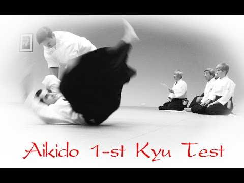 Aikido Aikikai 1-st Kyu Full Real Test