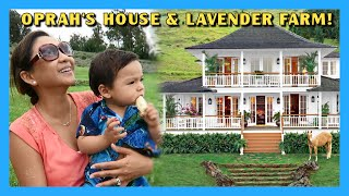 Maui Vacation Day 6: Oprah's House & Lavender Farm!
