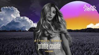 Alina Eremia - Printre Cuvinte (Asproiu Remix)