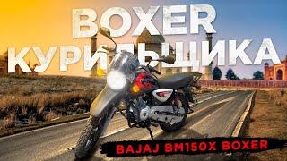 bajaj-boxer-bm150x-yamaha-ybr-125