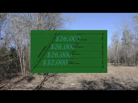 2-3 acres for sale in Tangipahoa Parish