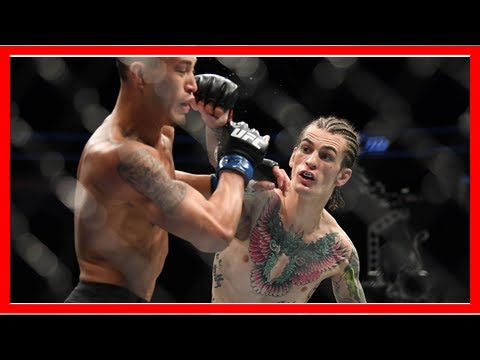 Breaking News | O'Malley Wants To Headline UFC Event This Fall