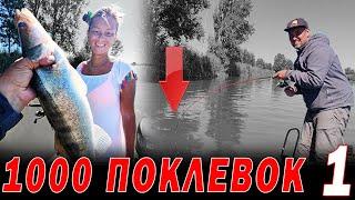 1000 поклевок Астрахань СДАЮ ВСЕ ТОЧКИ рыбалка с каждого ЗАБРОСА часть 1