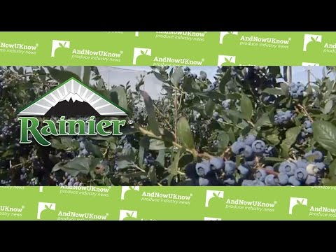 AndNowUKnow - Rainier Fruit Company - Behind the Greens