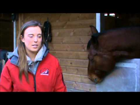 Showjumping's Advanced Apprenticeship in Sporting Excellence