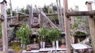 1200年余り前 兄弓削の道鏡の失脚により 猿丸太夫は ここ佐川に流され居...