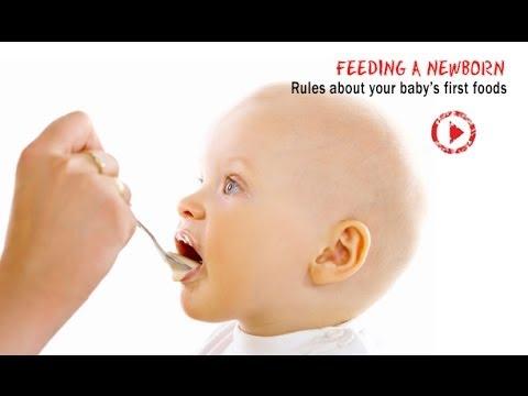 The Impact Of Food Imprinting On Children - Dr. Alan Greene