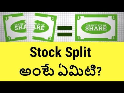 indian stock market basics for beginners pdf
