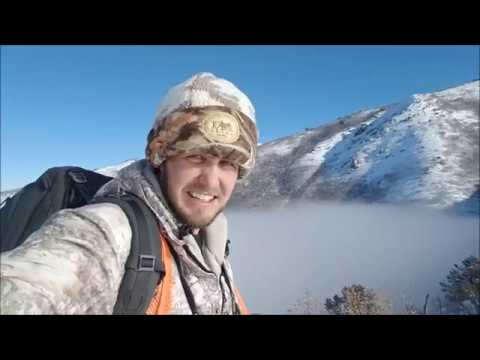 Wasatch Front Cow Elk Hunt 2016 with Austin Taylor