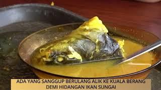 Awani state [terengganu]: ada yang sanggup berulang alik ke kuala berang demi hidangan ikan sungai, 'singgang pedas baung' berang, rahsia...
