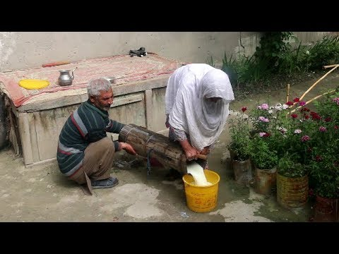 Traditional  Lassi Recipe Of My Village, Chalt, Nagar Valley   Gilgit Baltistan   Pakistan