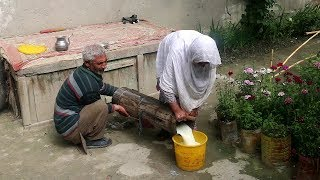 Traditional Butter Milk Recipe Of My Village, Chalt, Nagar Valley   Gilgit Baltistan   Pakistan