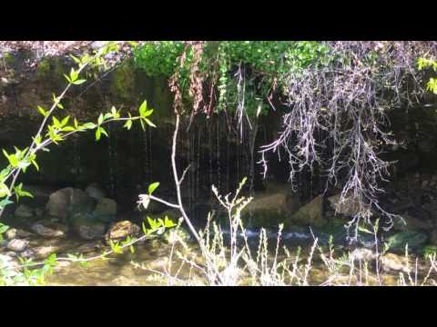 Dripping Rock Trail Spanish Fork, UT by katie rains