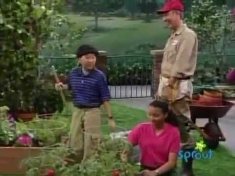 Barney & Friends: How Does Your Garden Grow? (Season 6, Episode 16) (complete episode) on sprout