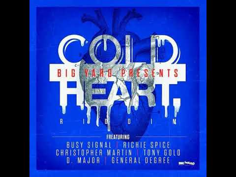 COLD HEART RIDDIM MIX BY DJ MIKE AKA MIGHTY KING  (COMBAT SOUND SYSTEM )