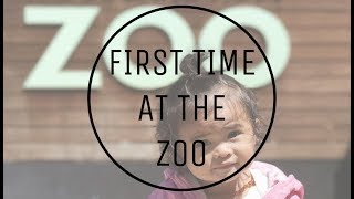 Rylee's First Time At The Zoo | The KC Chronicles #7