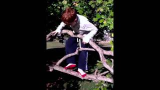 Test tube aliens hiding in the tree