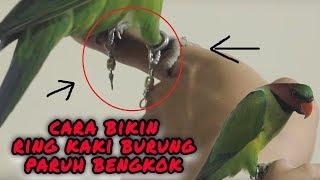 bikin ring kaki burung betet low budget dari gantungan burung dan cara pasangnya