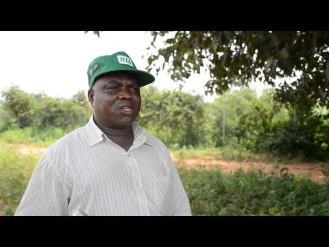 Mr Ruben Solomon, IITA Kano station talks about Agricultural business among youths