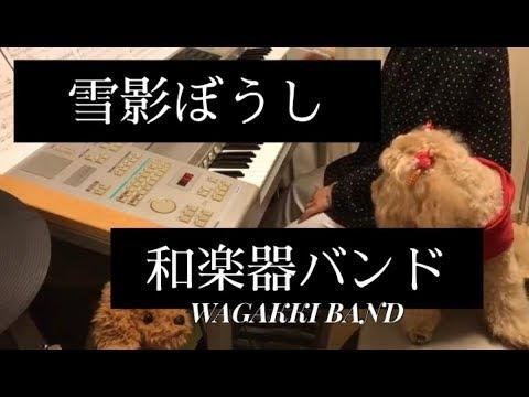 雪影ぼうし 和楽器バンド/Wagakki Band エレクトーン演奏