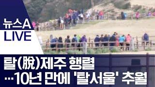 탈(脫)제주 행렬…10년 만에 '탈서울' 추월 | 뉴스…
