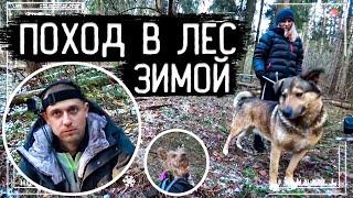 Подготовка к Выживанию в Диких Условиях! Поход в Зимний Лес с Блондинкой и Двумя Собаками.