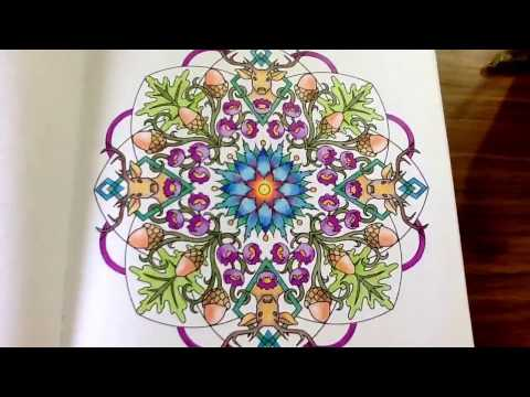 The Nature Mandala - colouring book by Cynthia Emerlye -  14 watercolour and coloured pencils pages