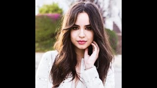 Sofia Carson, Alan Walker - Back to Beautiful LYRICS