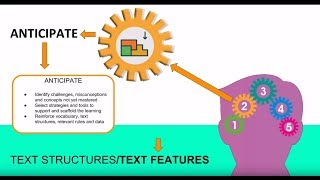 Text Structure/Features