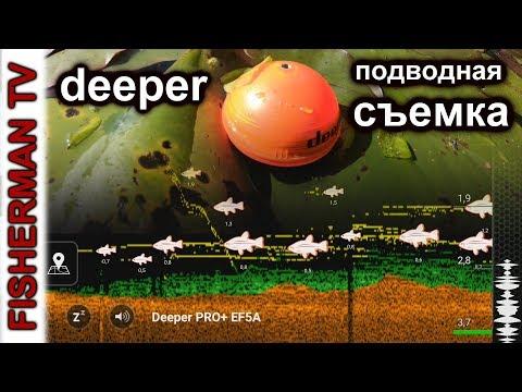 Подводная съёмка эхолота. Что он нам показывает?