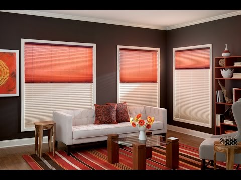 Day and Night Pleated Shades / Blinds