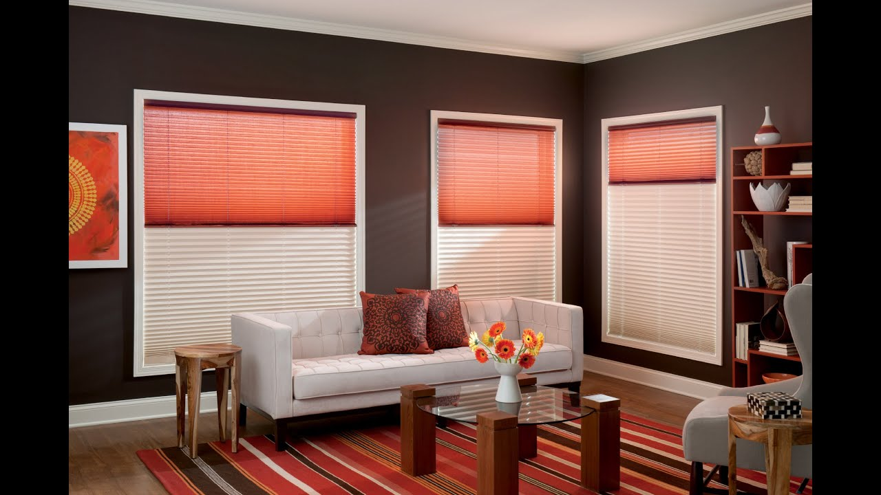 Day And Night Pleated Shades Blinds