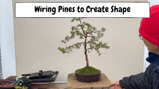 Wiring Pines to Create Shape