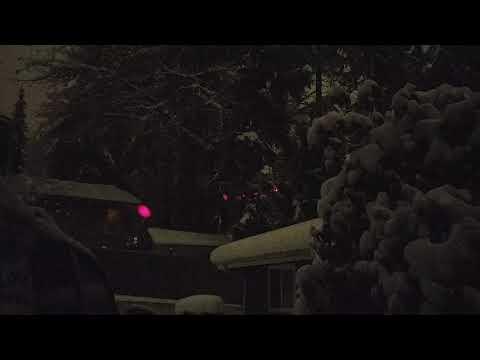 My Laser Pointer Illuminating Falling Snowflakes.
