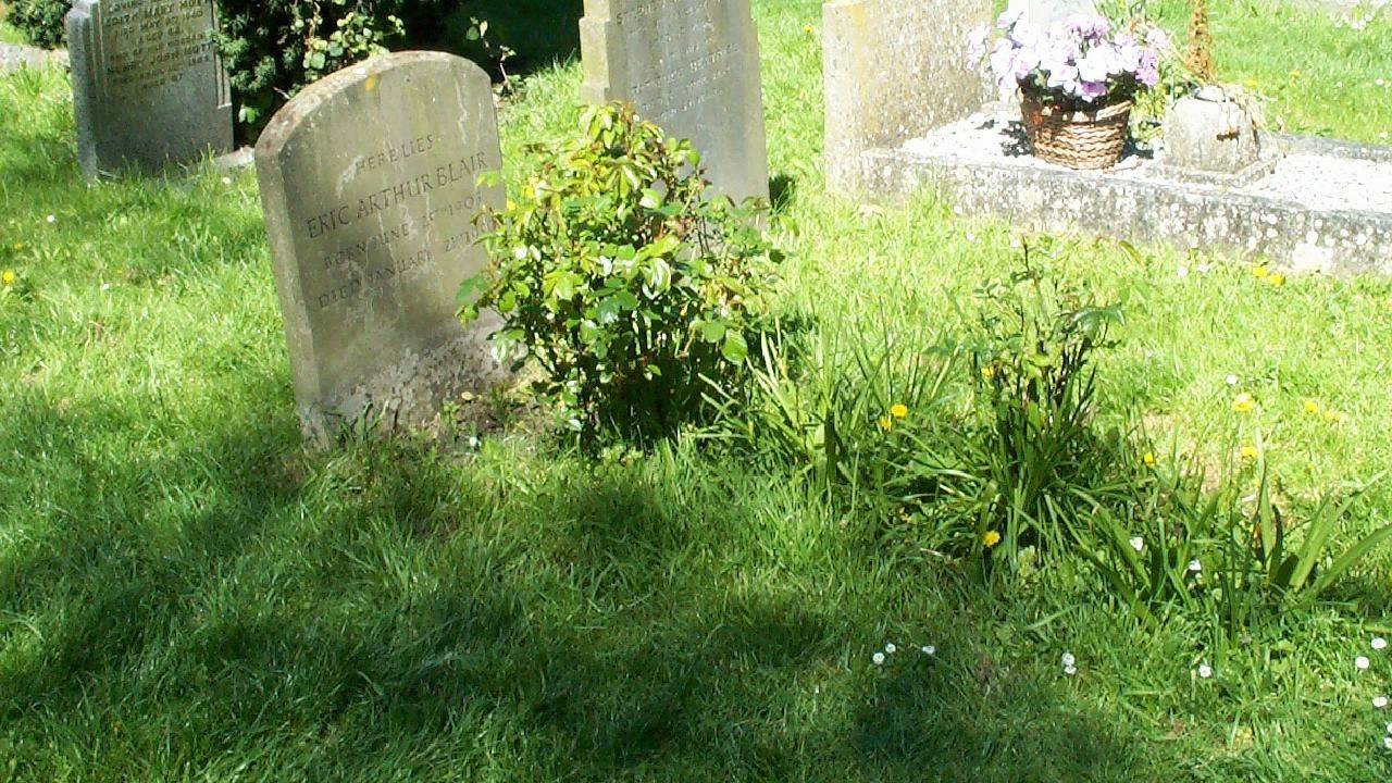 a critical analysis on ah are you digging on my grave a poem by thomas hardy Critical analysis of thomas hardy's novel tess of the d'urbervilles ah, are you digging my grave by thomas hardy literary analysis of 'the going' by thomas hardy.