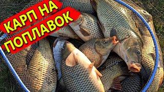 БЕШЕНЫЙ КЛЕВ КАРПА В АПРЕЛЕ КАК ПРАВИЛЬНО ОСНАСТИТЬ УДОЧКУ Рыбалка на карпа 2020