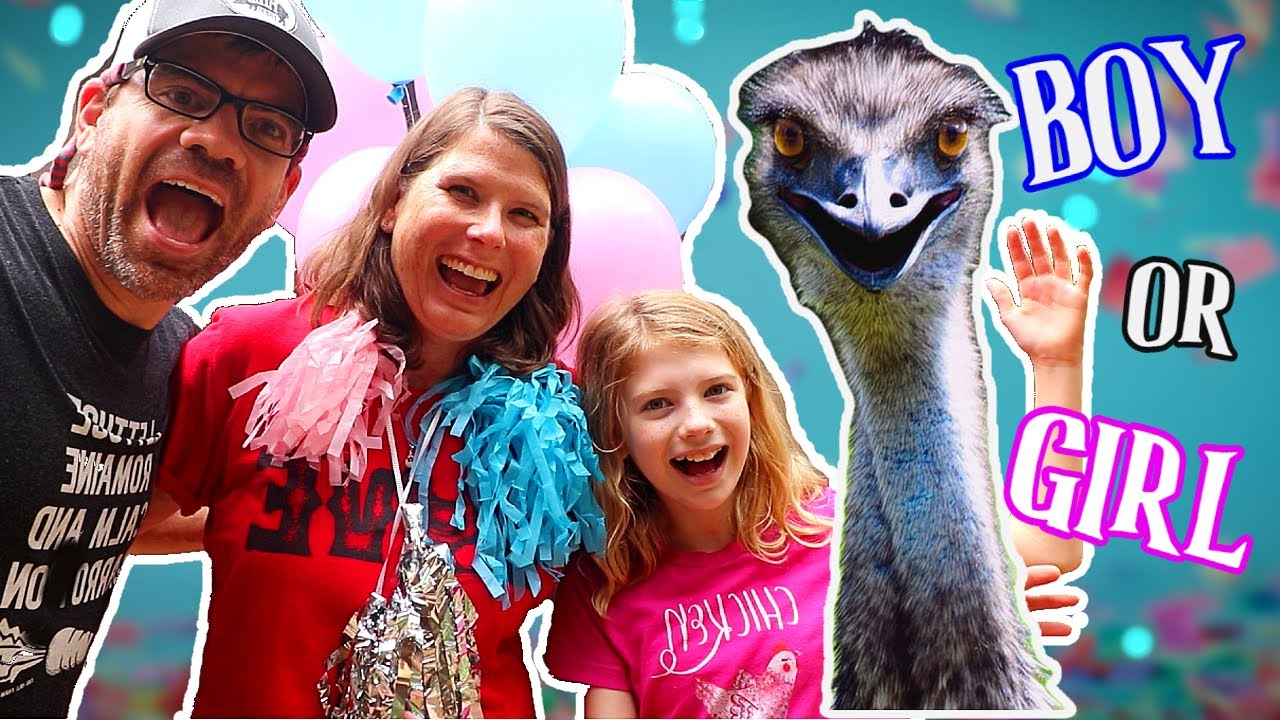 Throwing a CRAZY PARTY For Our EMU!!! [Gender Reveal Party]🎉🎈