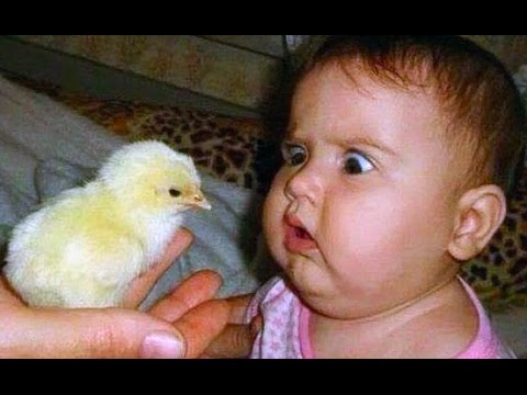 TRY NOT TO LAUGH - Funny Babies Compilation 2017