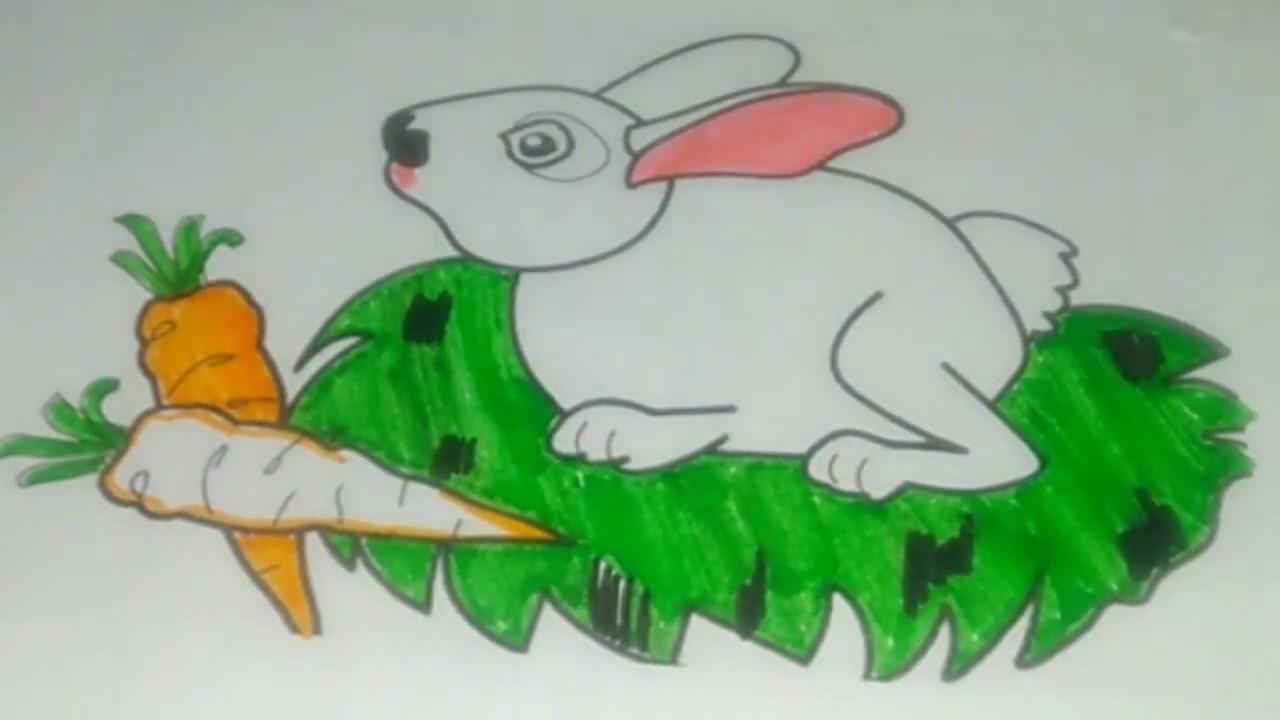 How To Drawing And Coloring Rabbit Menggambar Dan Mewarnai Kelinci