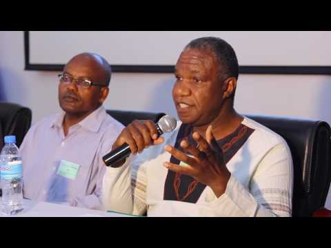 Panel :  Scaling Up Conservation Agriculture
